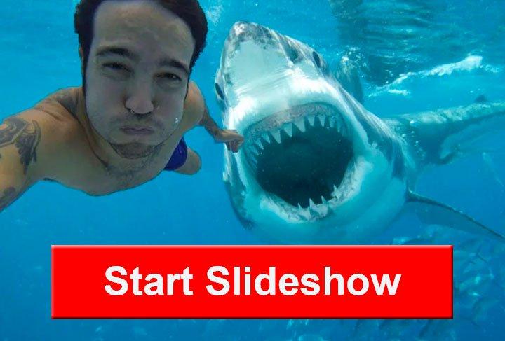 deadly selfies 1