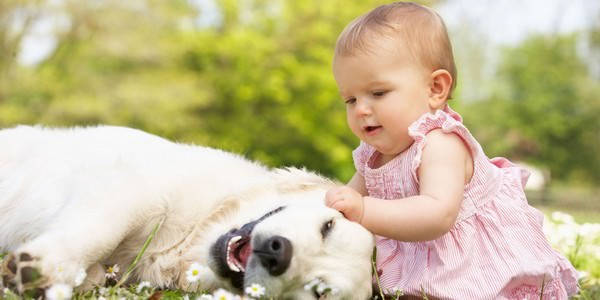 Pet the best thing in this world